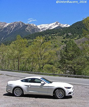Mustang_imGebirge_01_KC